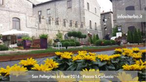 san-pellegrino-in-fiore-viterbo-2