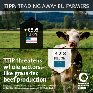 Impatto sull'allevamento bovino