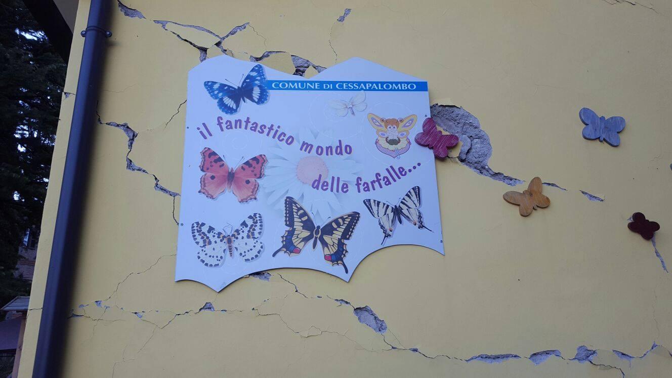 il giardino delle farfalle (6)