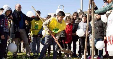 I cittadini di Catania piantano alberi nel centro della città. Grazie al crowdfunding (e a Greta Thunberg)