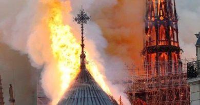 """Lettera di un padre al figlio organista: """"Suonerai a Notre-Dame. Suonerai per Notre-Dame"""""""