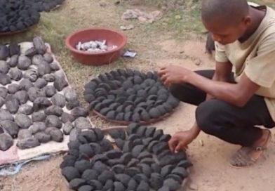 In Costa d'Avorio un carbone ecologico dai baccelli del cacao