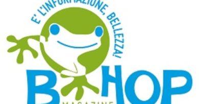 B-hop magazine e la strategia del rospo