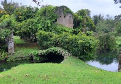 Weekend d'autunno: i Giardini di Ninfa, come fare un viaggio in Irlanda