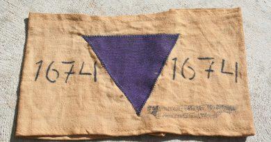 """Giorno della memoria: la storia dimenticata dei """"triangoli viola"""", i Testimoni di Geova nei lager"""
