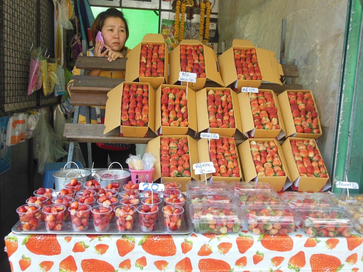 Fragole di Chiang Mai